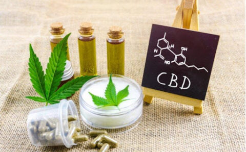 Types of Products You Can Find at Cheefbotanicals CBD